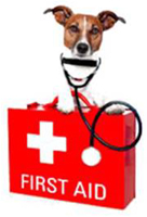 Pet First Aid Awareness Month