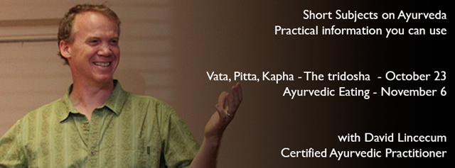 At the root of ayurvedic healing is understanding who you are