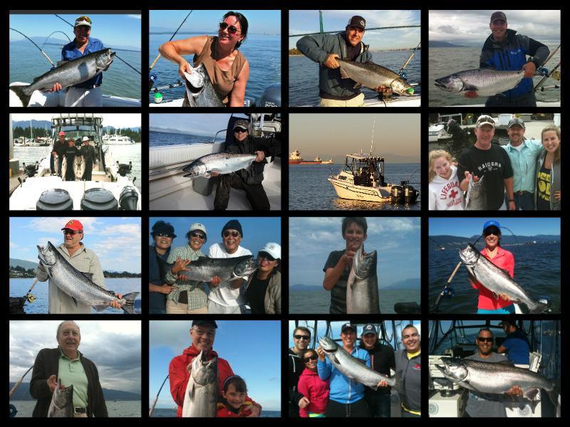 salmon montage