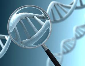 DNA Magnifier