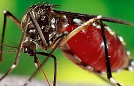 Zika virus research