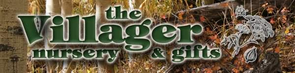 Vilager Logo Fall