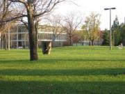 spotlight campus