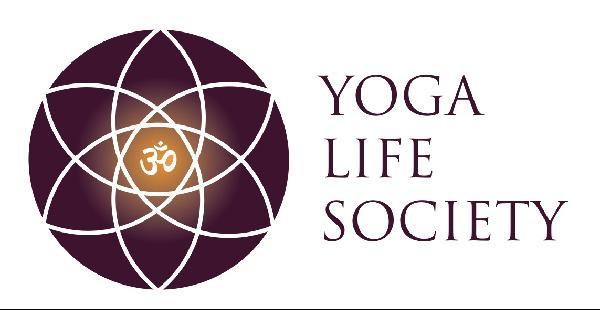 YLS Logo
