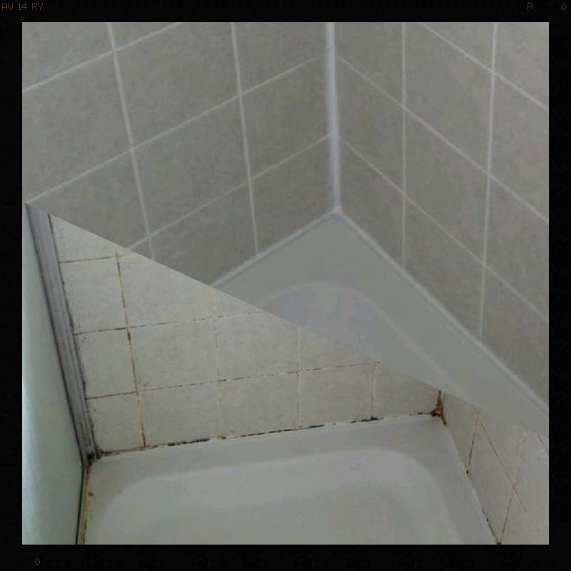 Shower Restoration cleaning