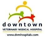 DVM Hospitals