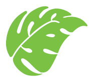 OTS Leaf