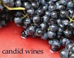 Candid Wines Logo