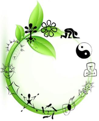 sri flusso verde