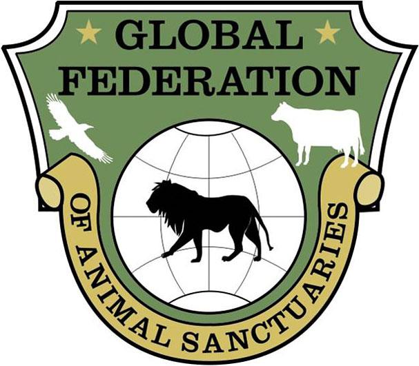GFSA Logo