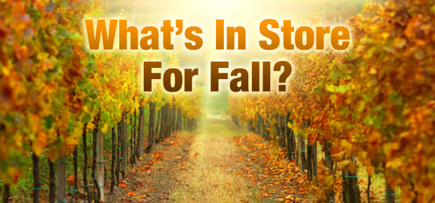 What's In Store For Fall? Get Our Forecast!