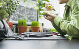Brighten Your Office Space! Create A Desk Garden