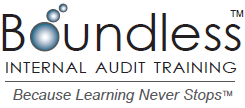 Boundless IAT Logo