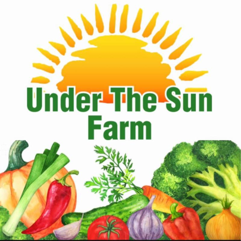 Under the Sun Farm