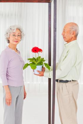 asian couple apologizing