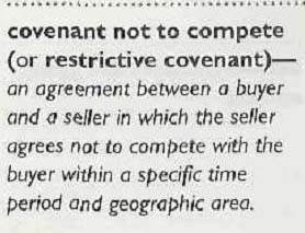 Non Compete Payments Made With Stock Purchases Must Be Amortized