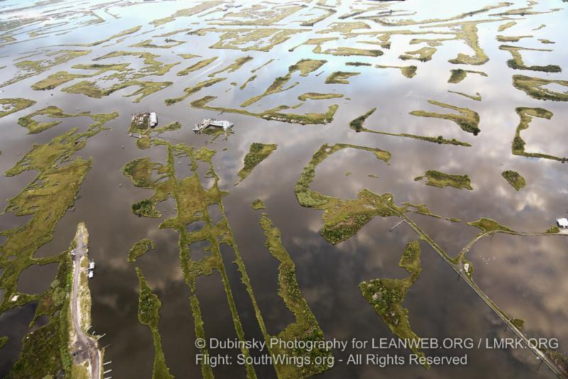 Louisiana coastal wetlands cut to ribbons by oil and gas activity.