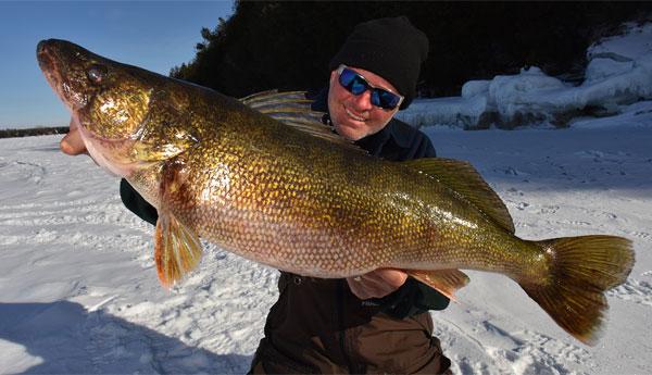 Sturgeon bay giants huge ice muskie get an extra month for Lake winnipeg ice fishing