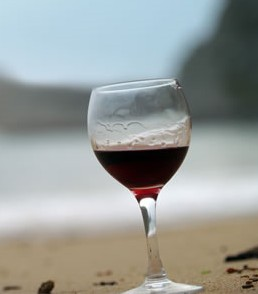 Vallarta Wine Fest pic