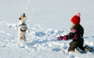girl palying with dog in snow
