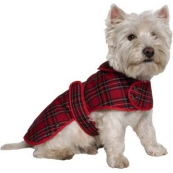 Scottie Dog Coat