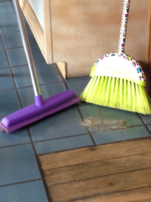 Sweepa vs Broom Challenge