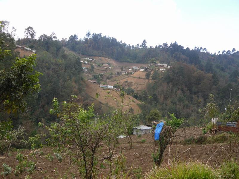 Chumanzana View