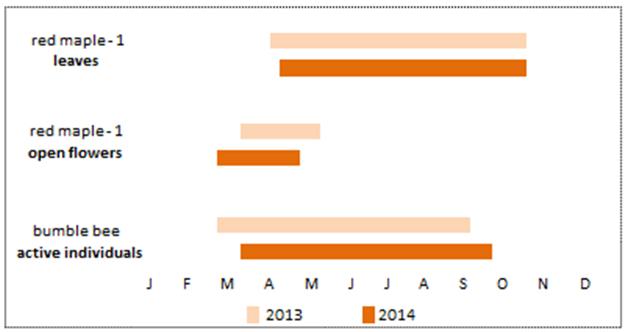 Sneak peak of phenology calendar