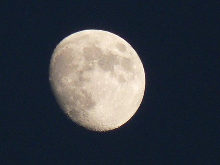 moon ll
