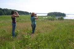 Birding on Great Bay's shores