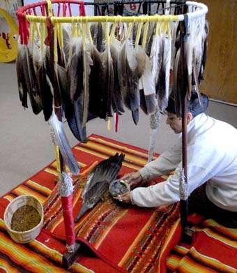 Sacred hoop 100 eagle feathers