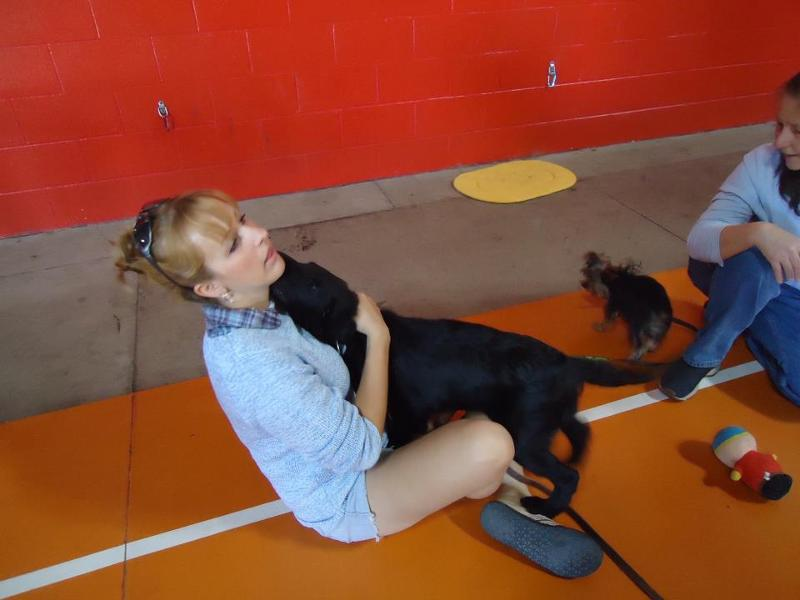 Rafter at puppy social