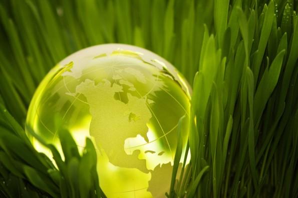 Sustainability Effor
