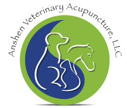 Anshen Veterinary Acupuncture