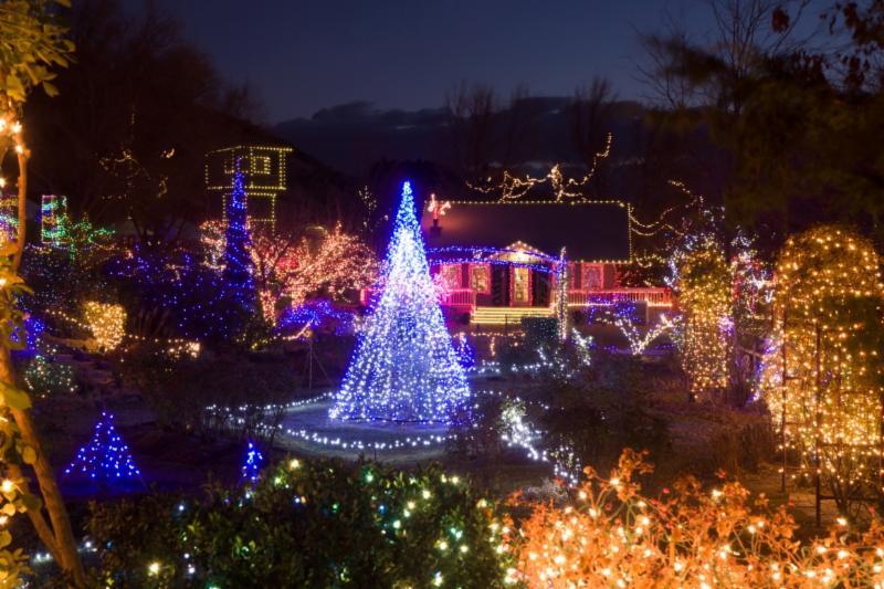 Idaho Botanical Garden Featuring Winter Garden Aglow Jill Giese Associates