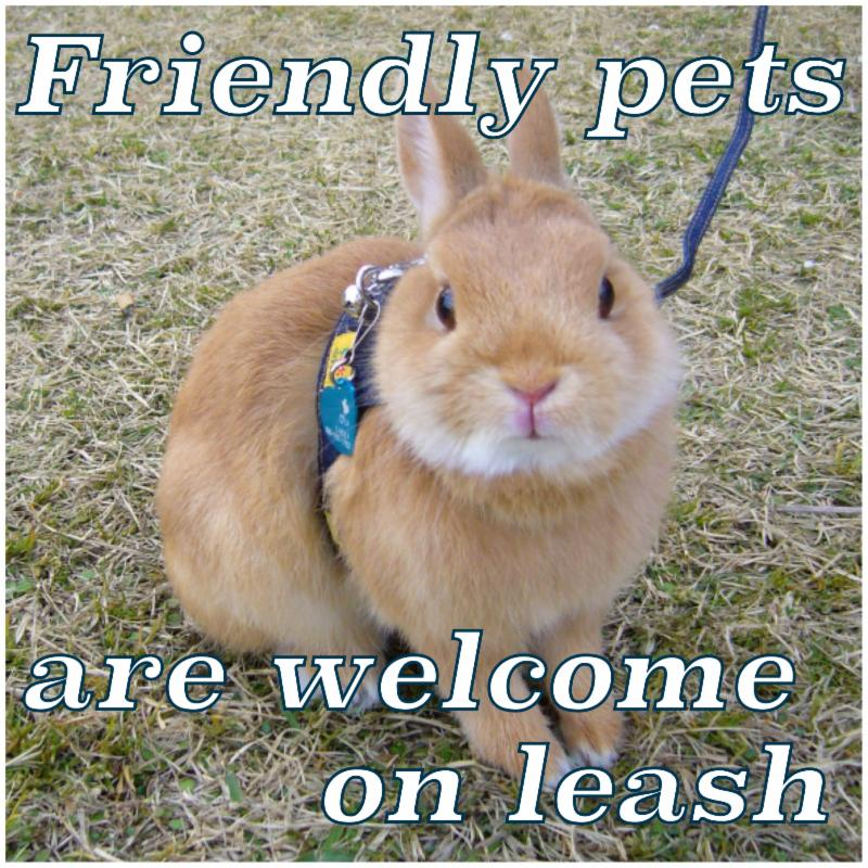 friendly pets are welcome on leash