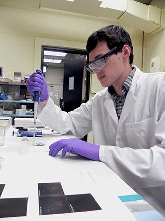 2103 Summer Scholar Scott Danielson  In Rubner lab at MIT.