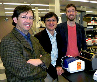 e Physics of Living Systems group at MIT includes, from left, Alfredo Alexander-Katz, materials science, Jeff Gore, experimental physics, and Jeremy England, theoretical physics. Another theoretical physicist, Nikta Fakhri, will join the group later this year.