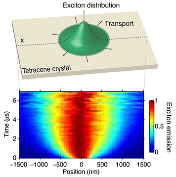 Diagram of an exciton within a tetracene crystal. MIT photo