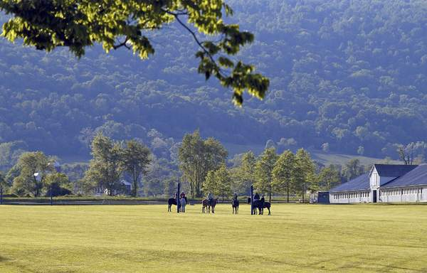 October polo school by Crowell Hadden