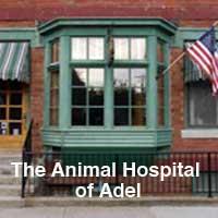 The Animal Hospital of Adel