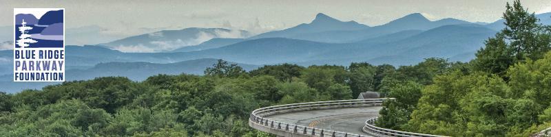 Viaduct Header Image