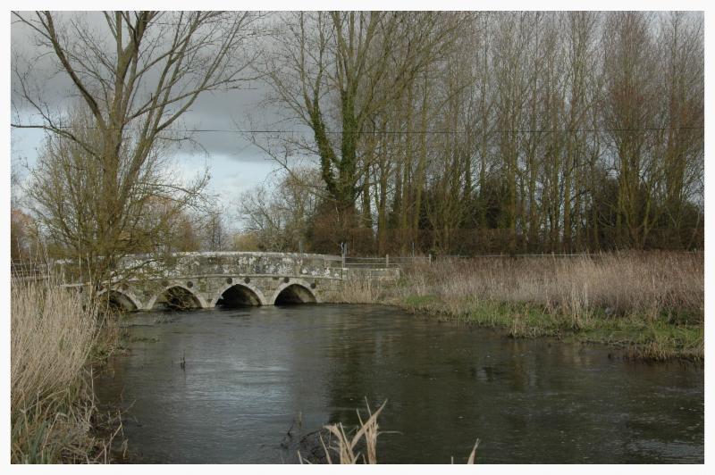 River Allen March 2014