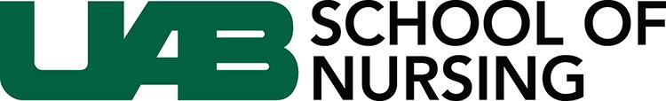 2013 SON logo