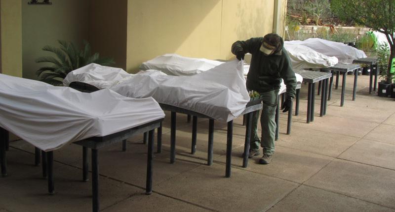 frost blanket morgue