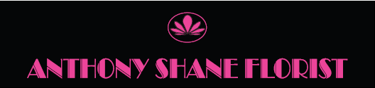 Anthony Shane Logo