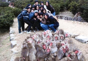 Japanese snow monkey 3