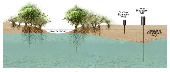 AQUIFER MONITORING FOR GROUNDWATER-DEPENDENT ECOSYSTEMS,  PIMA COUNTY, ARIZONA