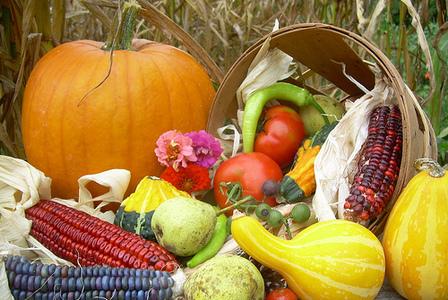 Acupuncturist's Harvest