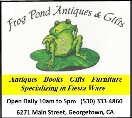 Frog Pond Ad